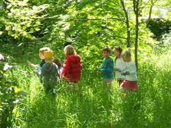 Monty S Mini Explorers Montessori Nature Club